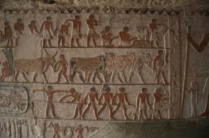 Daily Life scene from the tomb of Nefer in Saqqara. (PHOTO: Mohamed Megahed)