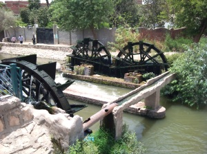 Water Wheels at Fayoum
