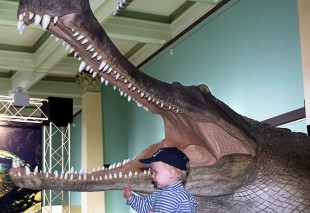 Crocodile-Museum